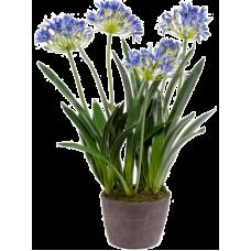 Агапантус / Agapanthus растение искусственное