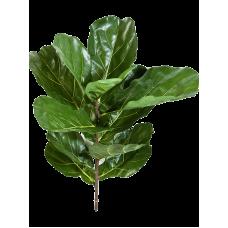 Fiddle leaf spray растение искусственное
