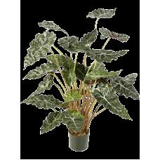 Алоказия / Alocasia растение искусственное