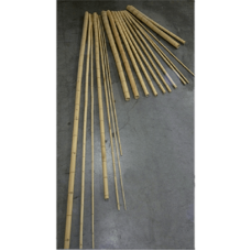 Decowood Bamboo natural (10-12 cm/300 cm)