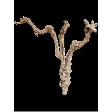 Decoration branch Grapewood sandblasted