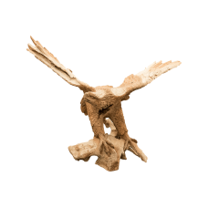 Decowood Eagle Sculpture (70-90 cm)