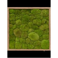 Bamboo 100% flat moss (natural)