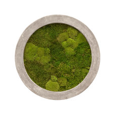 Raw grey 30% ball- and 70% flat moss