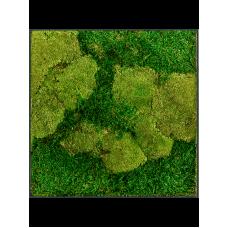 Stiel L RAL 7016 50% ball- and 50% flat moss