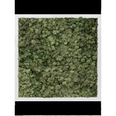 Aluminum 100% reindeer moss (dark green)