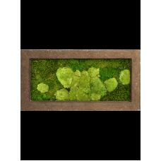Rock 50% ball- and 50% flat moss