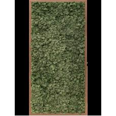 Meranti 100% reindeer moss (dark green)