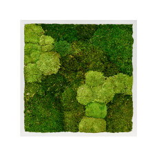 MDF RAL 9010 satin gloss 30% ball moss (natural) and 70% flat moss