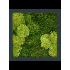 Stiel RAL 7016 mat 30% ball- and 70% flat moss