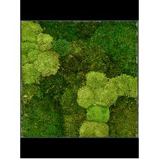 Stiel L RAL 7016 30% ball- and 70% flat moss