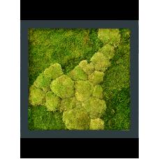 Stiel RAL 7016 mat 50% ball- and 50% flat moss