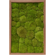Meranti 100% ball moss (natural)