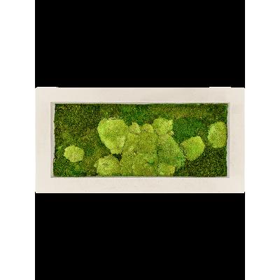 Natural 50% ball- and 50% flat moss