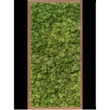 Meranti 100% reindeer moss (forest green)