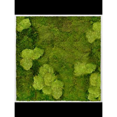 Aluminum 30% ball moss (natural) and 70% flat moss