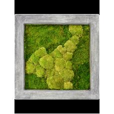 Raw grey 50% ball- and 50% flat moss
