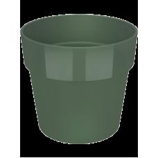 B. For Original Round Leaf Green